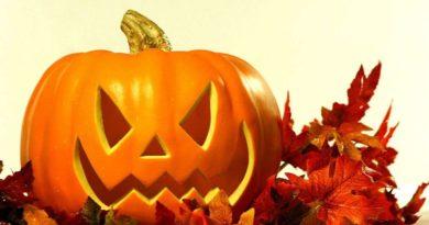 Halloween: boom di acquisti di zucche a Varese