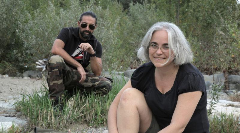 Le migrazioni dei draghi…sul Lago Maggiore